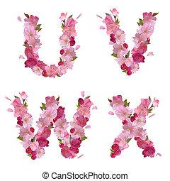 uvwx, アルファベット, 花, さくらんぼ, 春