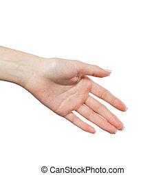uzgodnienie, odizolowany, ręka, tło., samica, biały, potrząsanie, woman.