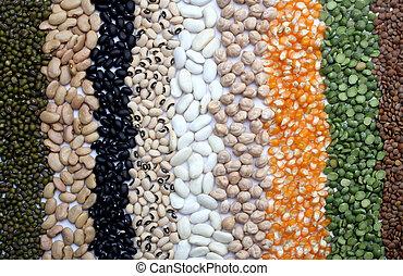 vário, sementes, e, grãos, cima