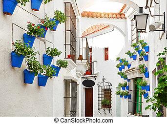 város, öreg, tengertől távol eső, hagyományos, utca, spain.