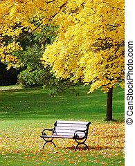 városi park, alatt, ősz