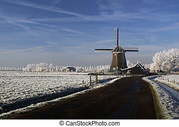 väderkvarn, in, a, vinter landskap