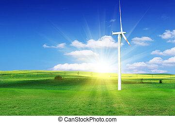 väderkvarn, med, frisk, grönt gräs