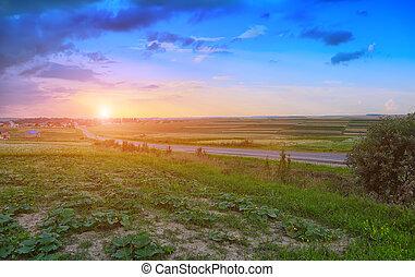 väg, fält, genom, grön, solnedgång