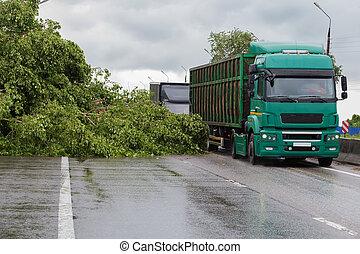 väg, fallen träd, cirkulerande, lastbilar