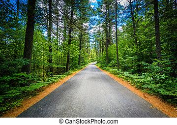 väg, genom, a, skog, hos, björn, bäck, tillstånd parkera,...