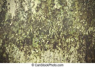 vägg, cement, våt