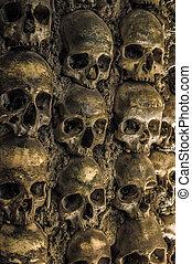 vägg, fyllda, av, skallar, och, knotor