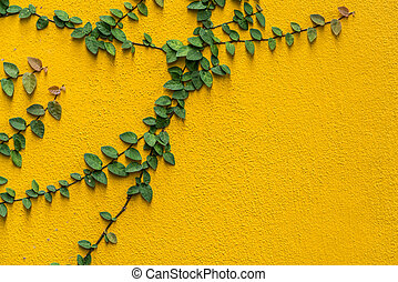 vägg, konkret, gammal