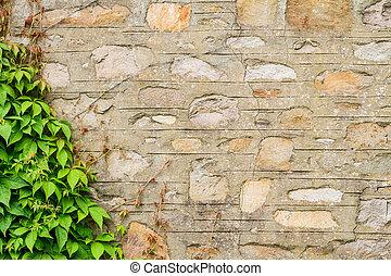 vägg, strone, gammal, bergsbestigare
