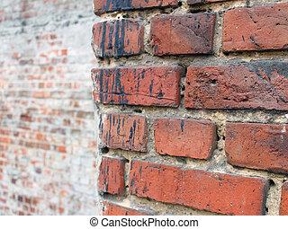 vägg, tegelsten, närbild