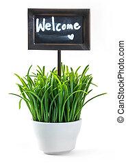 välkommande signera, och, gräs, in, keramik kruka