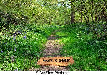 välkommen, till, den, fjäder, skogig, horisontal
