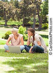 vänner, laptop, le, gräsmatta, sittande