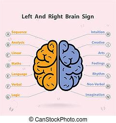vänster, kreativitet, affär, kunskap, hjärna, ikon, rättighet, underteckna, symbol, utbildning