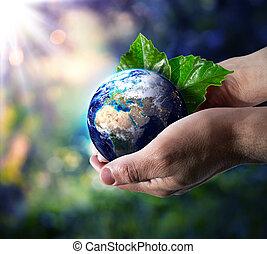 värld, in, hand, -, miljö, begrepp
