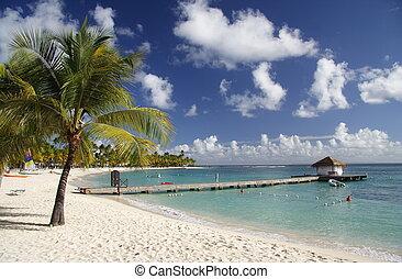 västindisk strand