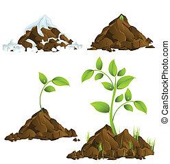 växande, planterar