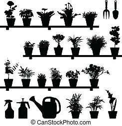 växt, blomma, silhuett, kruka