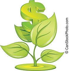 växt, dollar