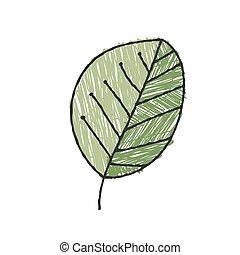 växt, fond färga, klotter, design, isolerat, vektor, skuggat...