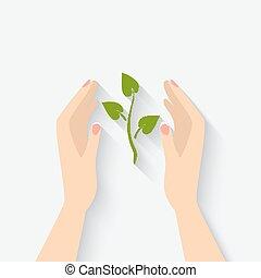 växt, grön, symbol, räcker