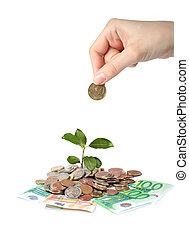 växt, hand, och, pengar.