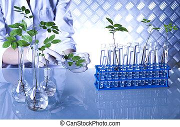 växt, laboratorium