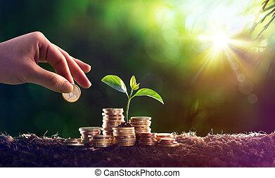 växt, växande, in, besparingar, mynter, pengar, -, investering, begrepp