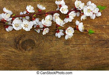 vår blomma