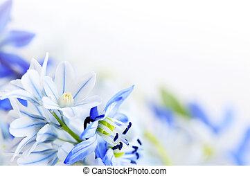 vår blommar, bakgrund