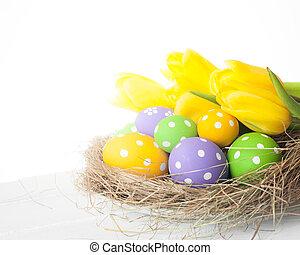 vår, påsk, bygga bo, med, ägg