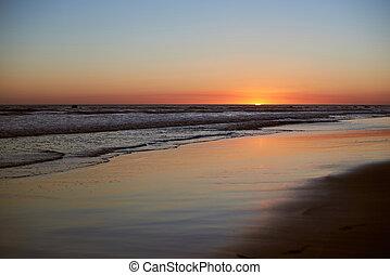 våt sand, på, hav, strand