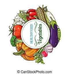 végétariens, légumes, ferme fraîche, croquis, nourriture