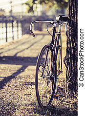 vélo, engrenage bicyclette, route, fixe