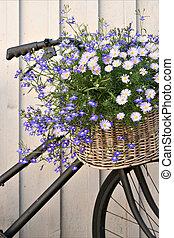 vélo, floral