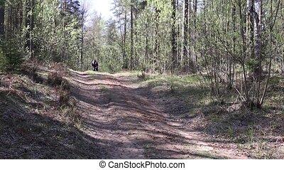 vélo, forêt, homme