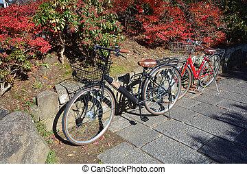 vélo, printemps, fleur, saison, automne, érable