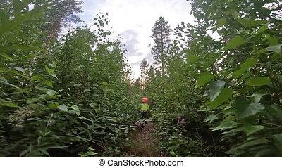 vélo, soir, métrage, petit, garçon, jeune, par, bush., pro, promenades, pov, forest., cavalier, aller