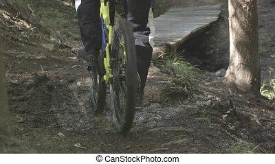 vélo tout terrain, homme, équitation