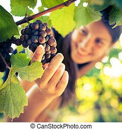 vérifié, femme, être, viticulteur, vignoble, raisins