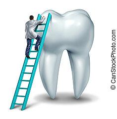 vérification, dentiste