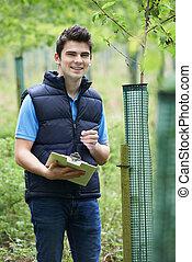vérification, ouvrier, jeune, arbres, sylviculture, presse-...
