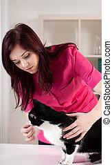 vérification, vétérinaire, santé, chat