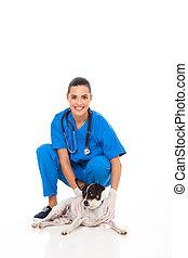 vétérinaire, aide, à, chouchou, chien