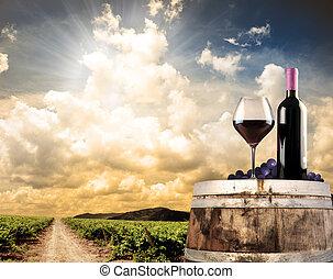 víno, zátiší, na, vinice