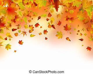vívido, outonal, folhas, quadro, para, seu, text.