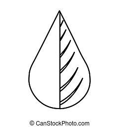 víz berendezés, csepp, levél növényen