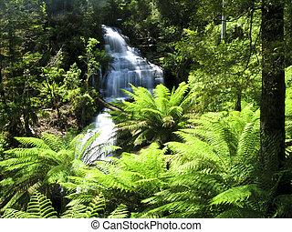 víz, erdő, bukás