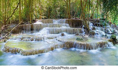 víz, erdő, mély, bukás